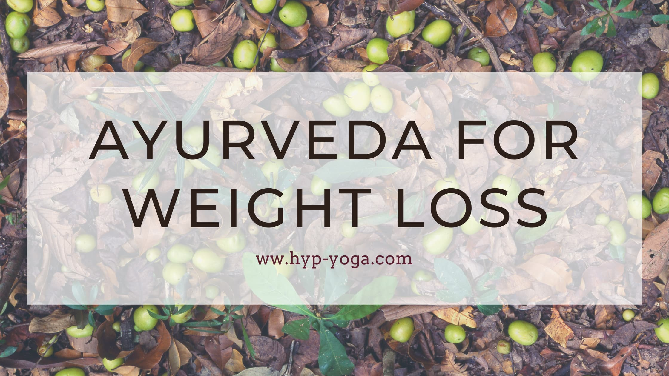 ayurveda weight loss